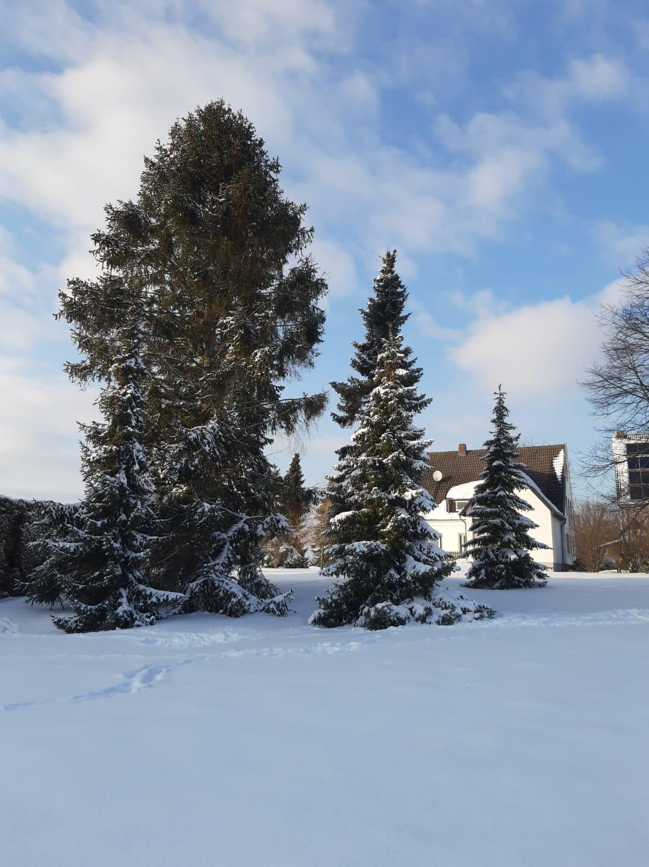 Kirche Sylbach Winter Luca Diering